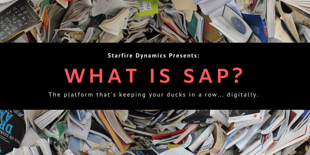 What is SAP? A CEO's Guide